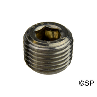 "Stainless Steel Plug for Heater Pressure Switch Location 1/8"" NPT"