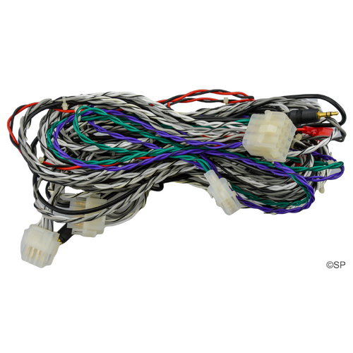 Poly Planar spa stereo wiring harness assembly